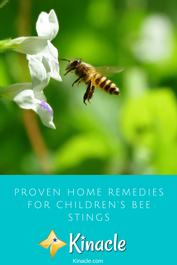 Proven Home Remedies For Children's Bee Stings